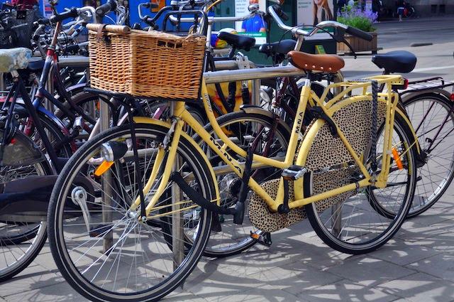 mega-rower