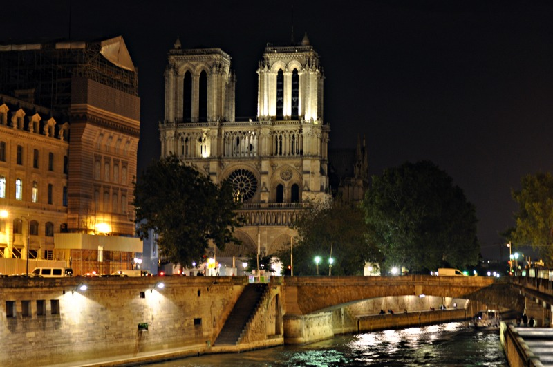 katedra notre dame nocą