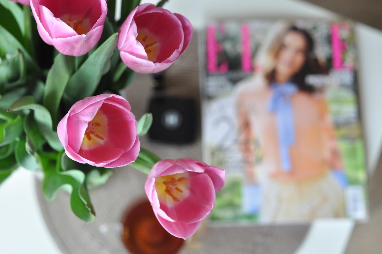 świeże tulipany