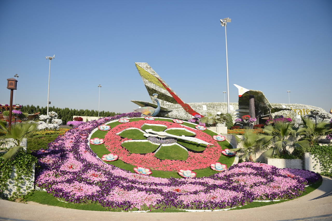 clock-at-miracle-garden