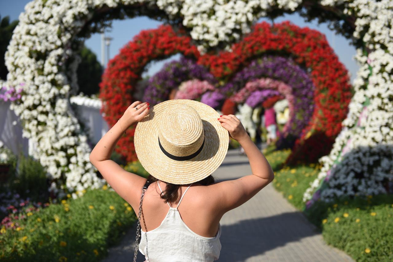 miracle-garden-information