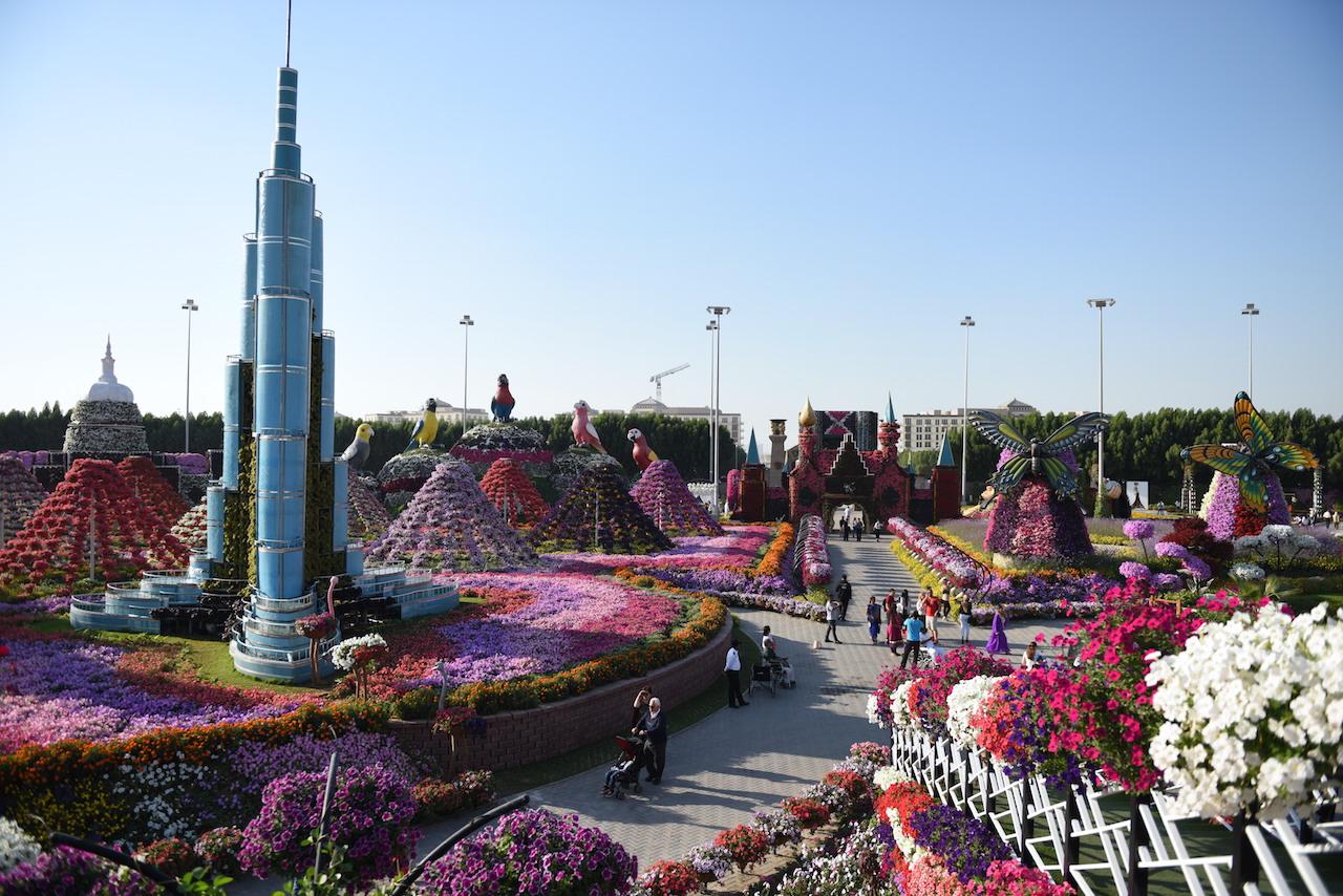 miracle-garden-photos-dubai
