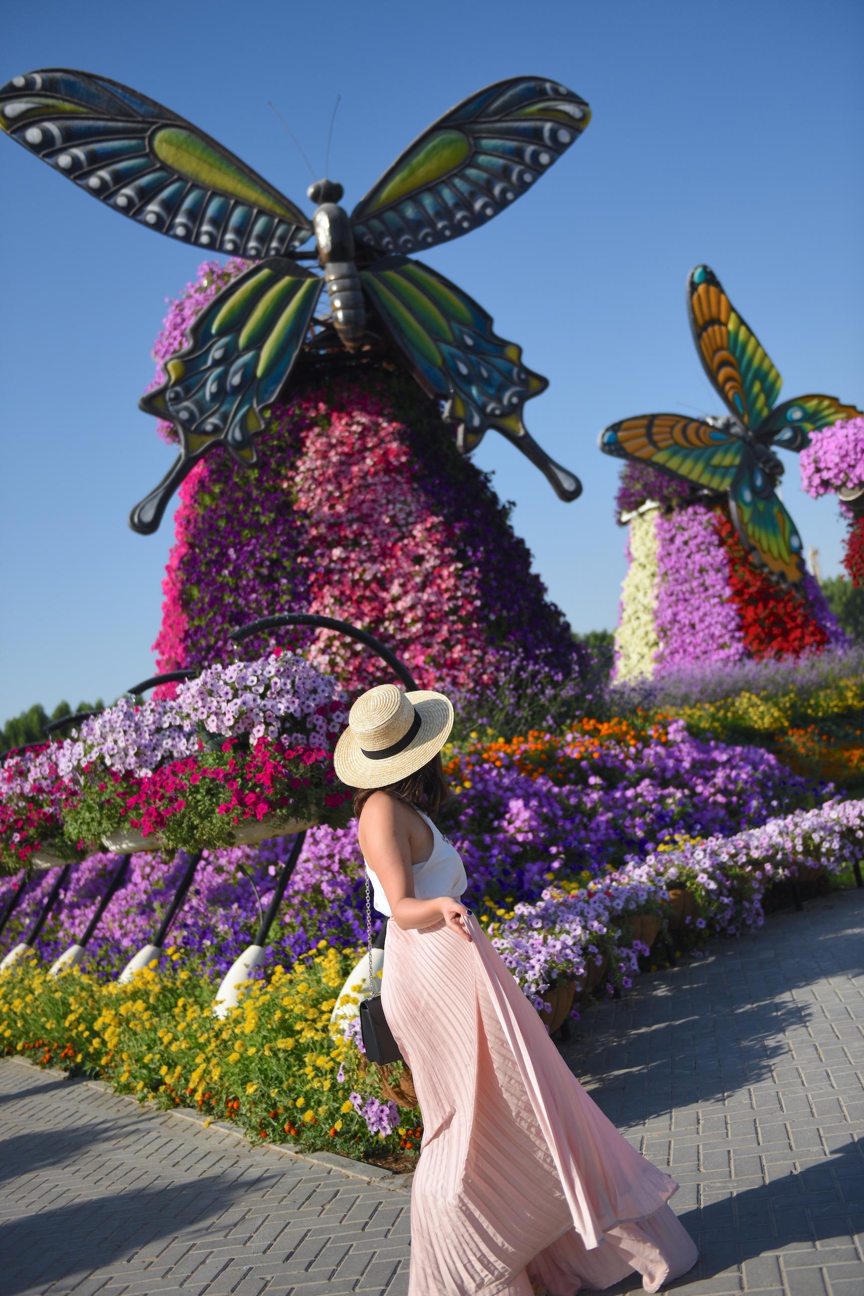 dubai-miracle-garden-photo