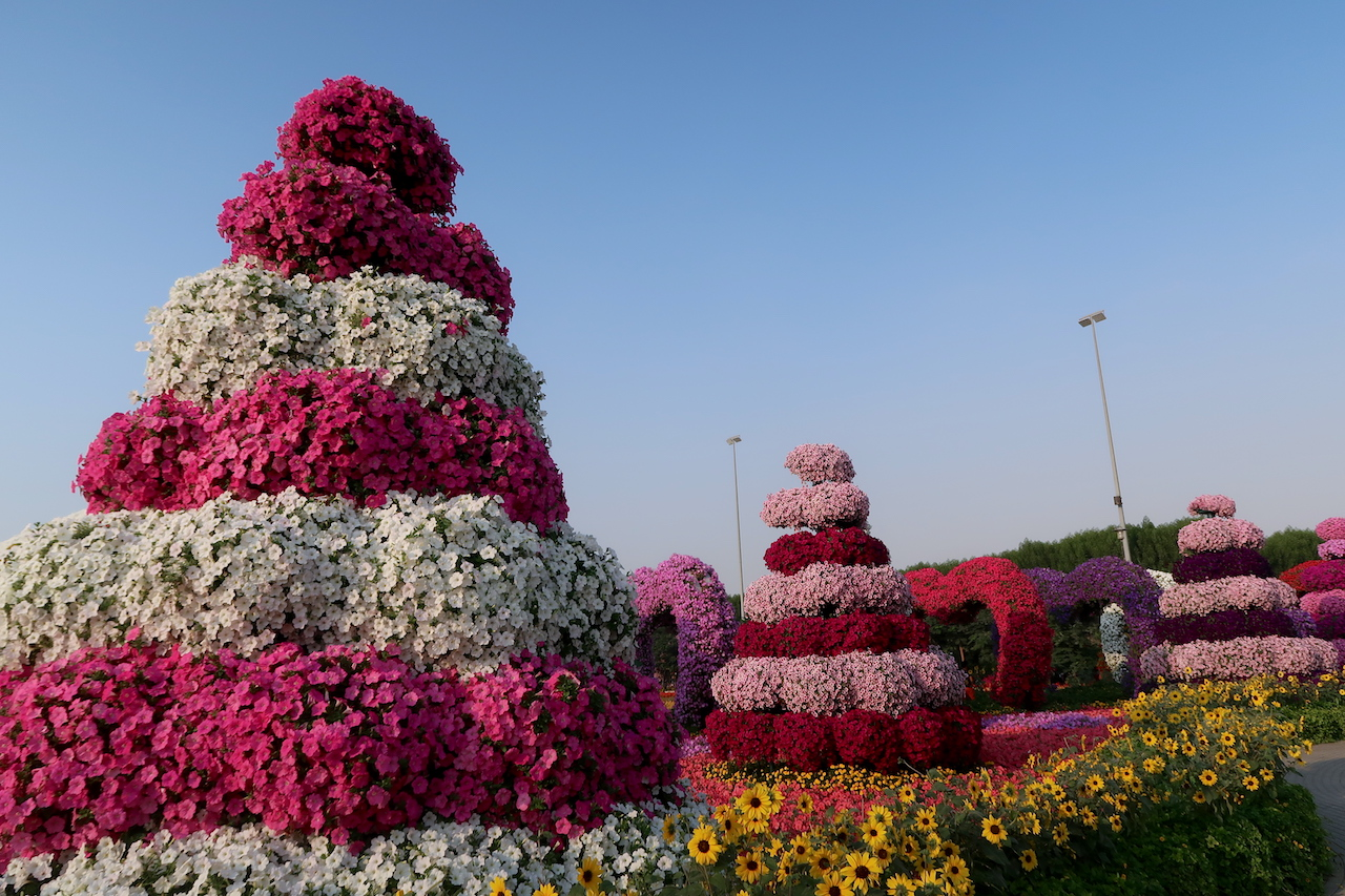 kwiaty dubai miracle garden