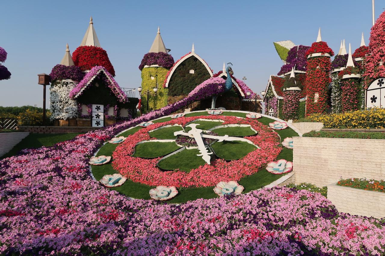 zegar dubai miracle garden