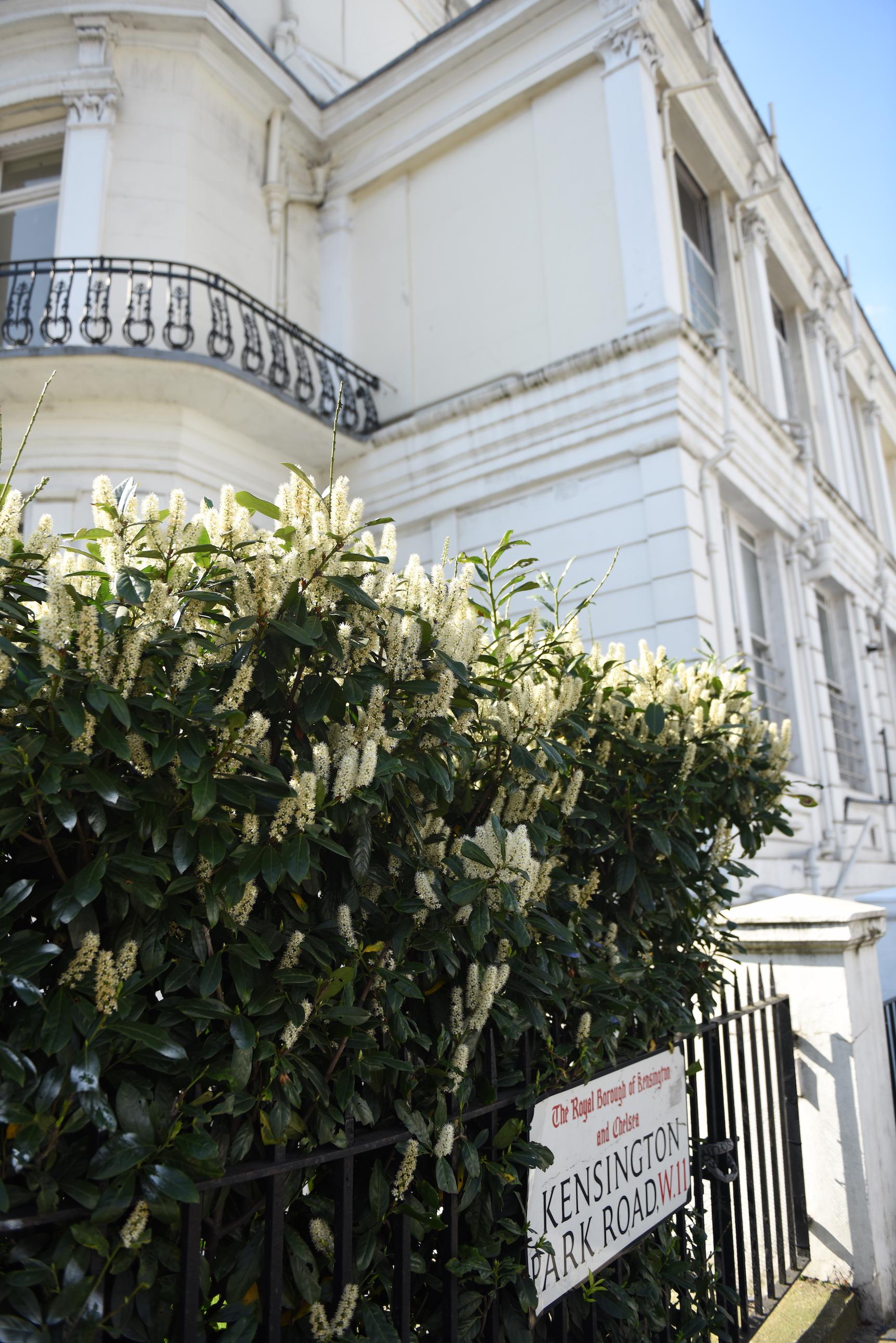 Dzielnica notting hill zdjęcia